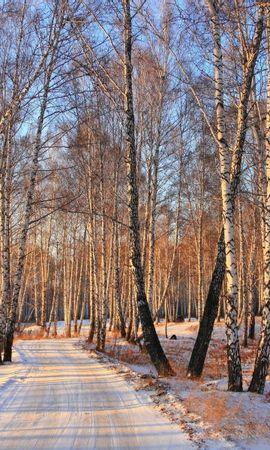 21970 скачать обои Пейзаж, Деревья, Дороги, Снег - заставки и картинки бесплатно