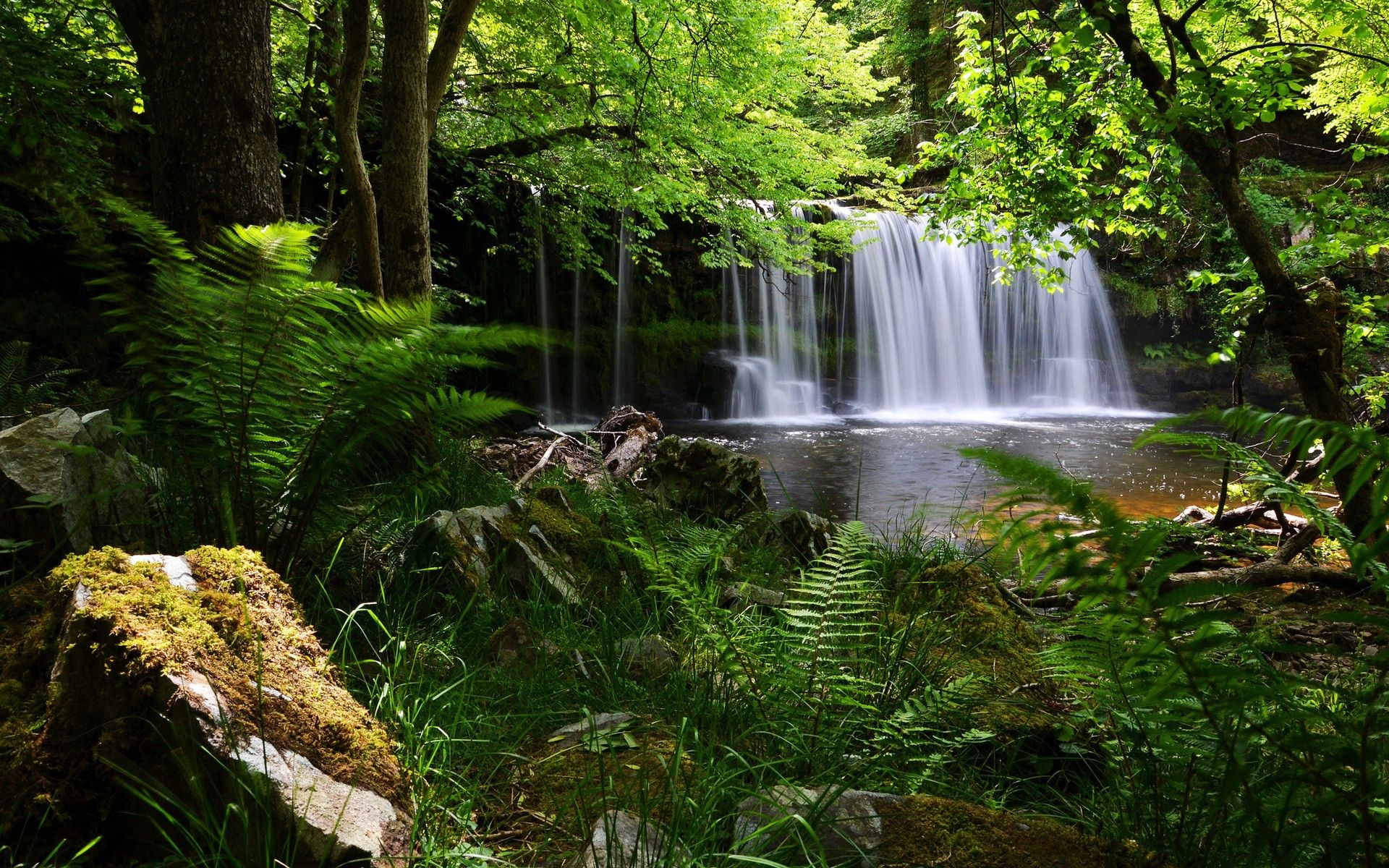 132450 download wallpaper Nature, Waterfall, Grass, Shadow screensavers and pictures for free