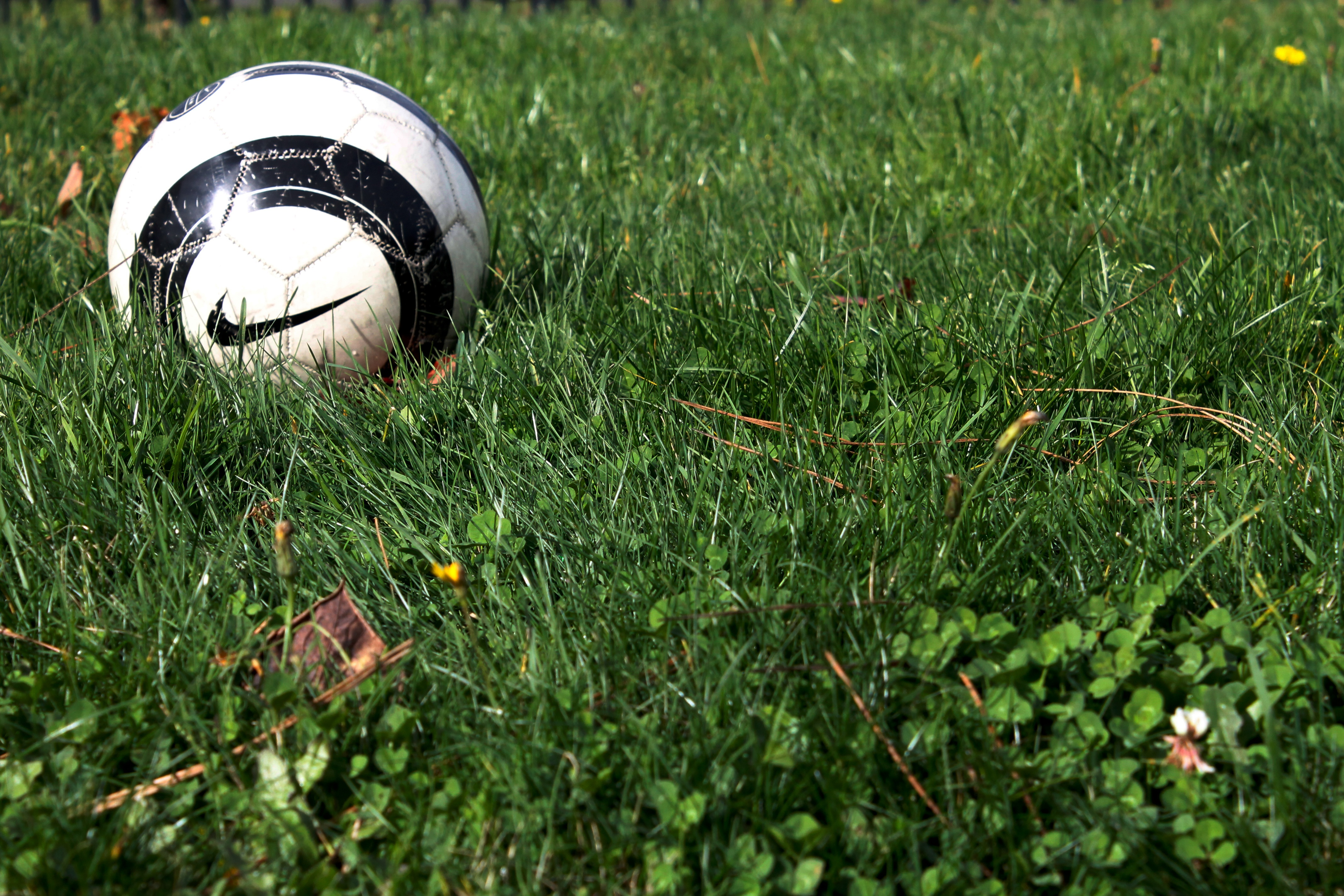 71070 скачать обои Найк (Nike), Спорт, Трава, Футбольный Мяч - заставки и картинки бесплатно