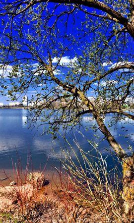 117242 Заставки и Обои Река на телефон. Скачать Природа, Дерево, Река картинки бесплатно