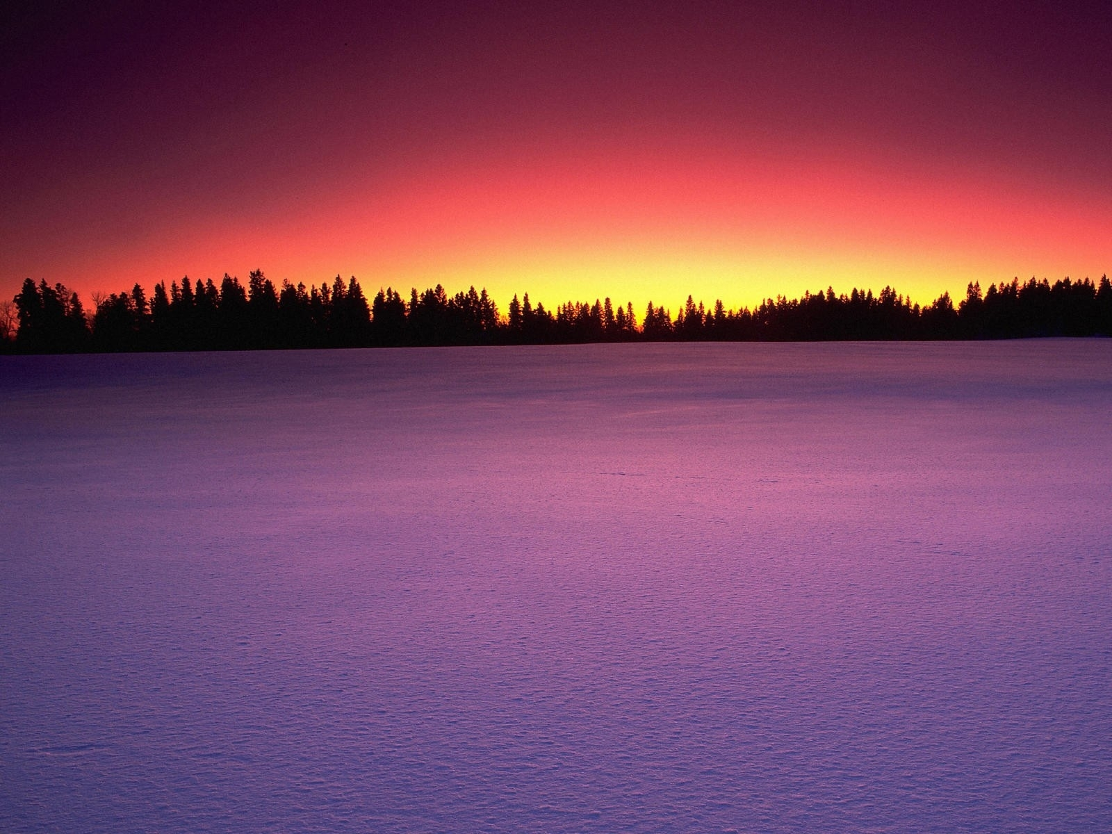 2609 download wallpaper Landscape, Winter, Snow screensavers and pictures for free