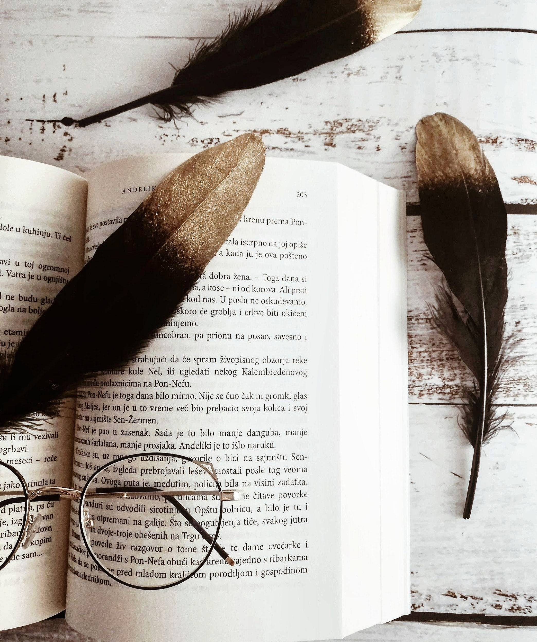 153815 Screensavers and Wallpapers Still Life for phone. Download Still Life, Feather, Miscellanea, Miscellaneous, Book, Glasses, Spectacles pictures for free