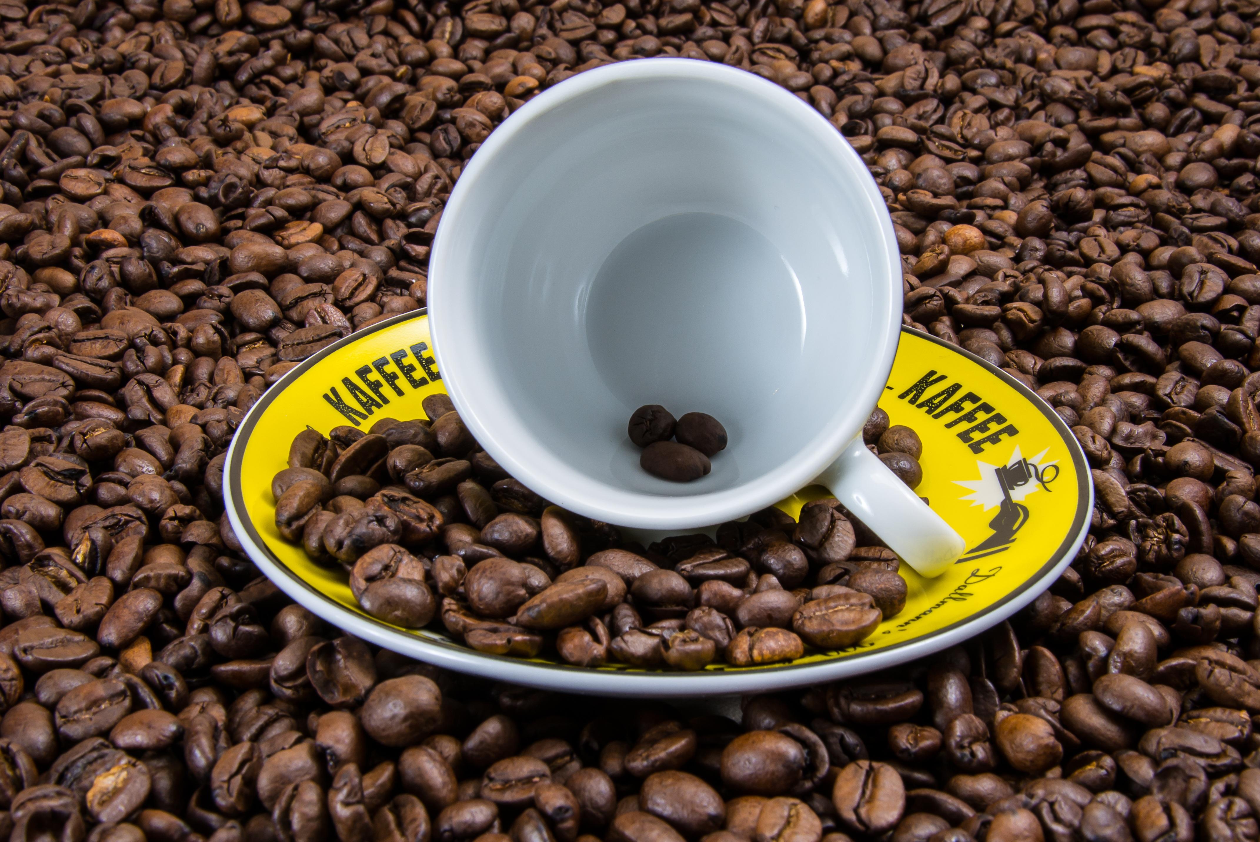 55284 télécharger le fond d'écran Nourriture, Café, Une Tasse, Coupe, Grains De Café - économiseurs d'écran et images gratuitement