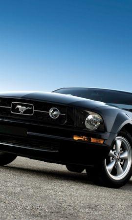 30227 descargar fondo de pantalla Transporte, Automóvil, Mustango: protectores de pantalla e imágenes gratis