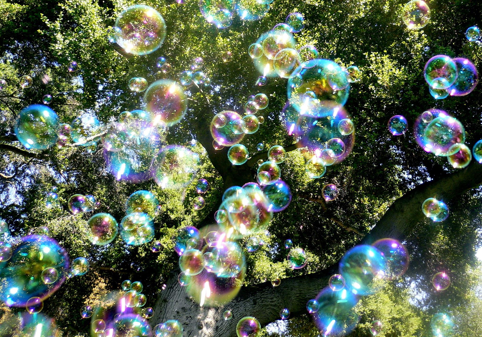 20962 скачать обои Растения, Фон, Деревья, Пузыри - заставки и картинки бесплатно