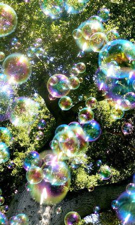 20962 скачать обои Растения, Деревья, Фон, Пузыри - заставки и картинки бесплатно