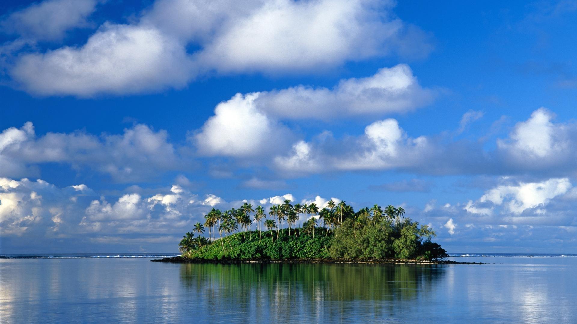 29451 скачать обои Пейзаж, Море, Пальмы - заставки и картинки бесплатно