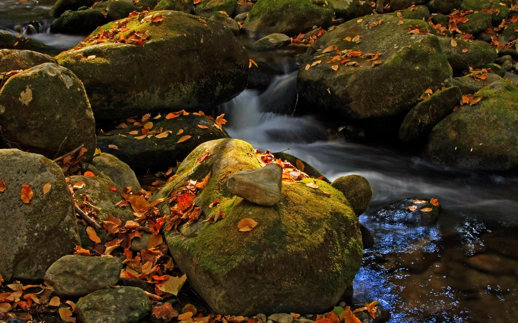 7988 скачать обои Пейзаж, Природа, Река, Камни, Осень - заставки и картинки бесплатно