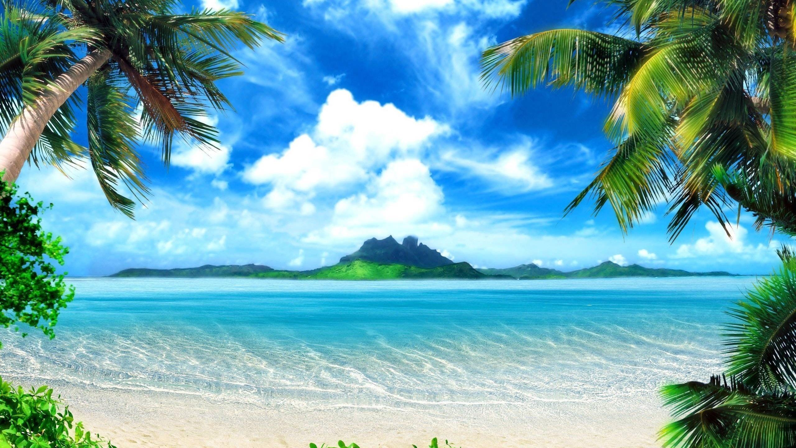 19373 скачать обои Пейзаж, Море, Пляж, Пальмы - заставки и картинки бесплатно