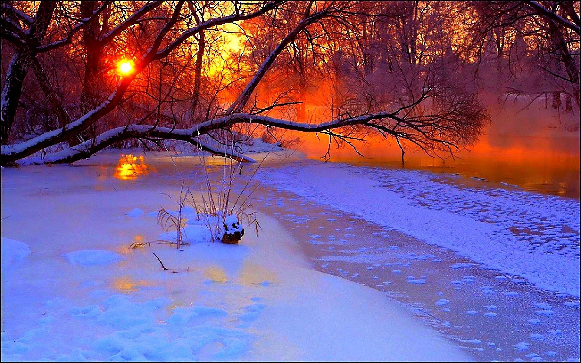 54634 скачать обои Снег, Зима, Природа, Закат, Дерево, Вечер, Пруд, Замерзший, Ветви - заставки и картинки бесплатно