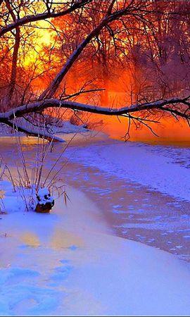 54634 скачать обои Природа, Зима, Закат, Вечер, Ветви, Дерево, Пруд, Замерзший, Снег - заставки и картинки бесплатно