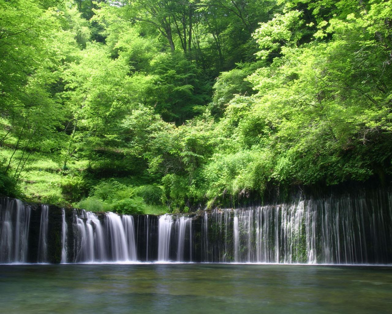 15427 descargar fondo de pantalla Paisaje, Agua, Árboles, Cascadas: protectores de pantalla e imágenes gratis
