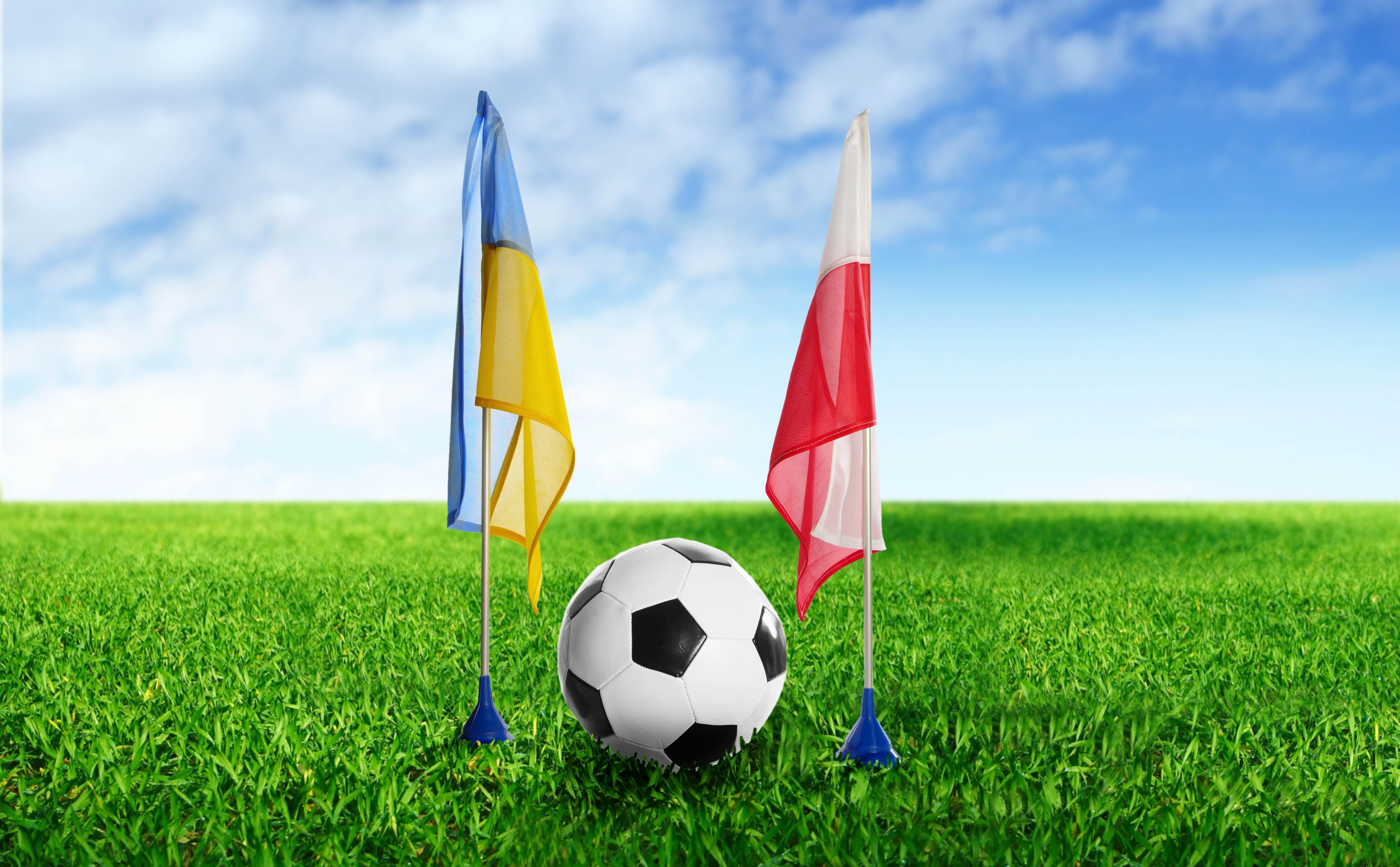 56780 скачать обои Спорт, Футбол, Украина, Польша, Мяч, Трава, Флаги - заставки и картинки бесплатно