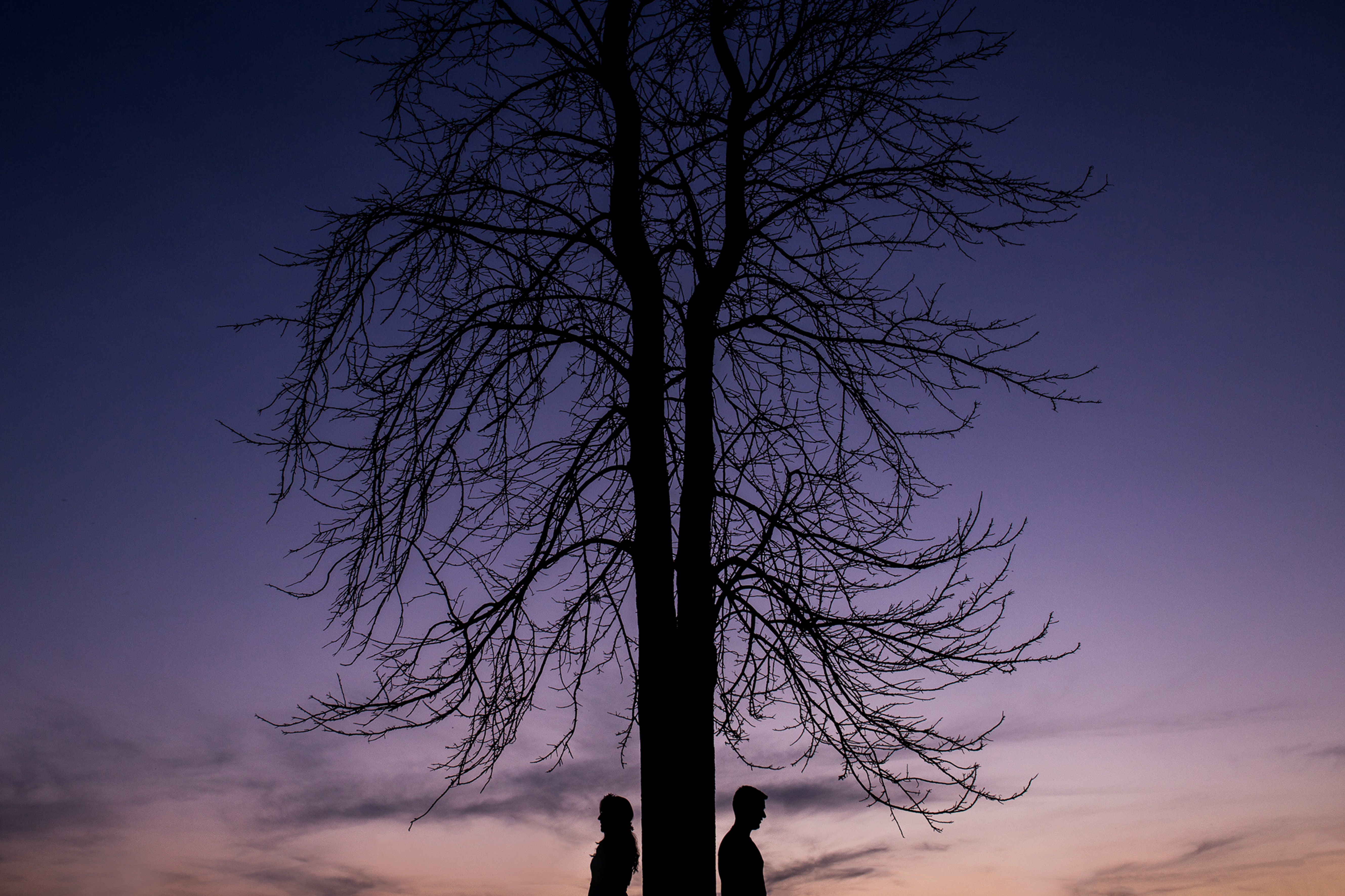 97214 download wallpaper Love, Couple, Pair, Silhouettes, Wood, Tree screensavers and pictures for free