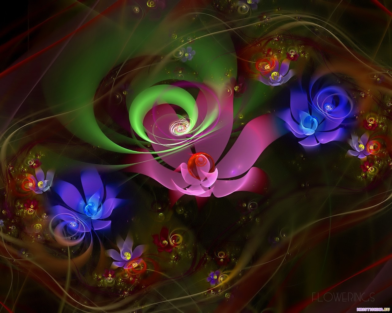 9016 download wallpaper Abstract, Flowers screensavers and pictures for free
