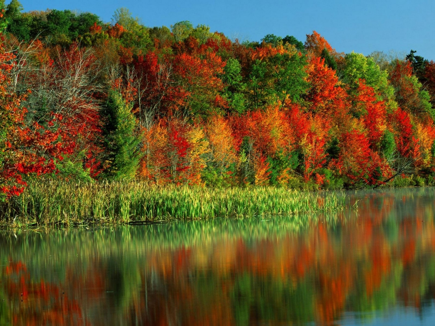 27943 download wallpaper Landscape, Rivers, Trees, Autumn screensavers and pictures for free