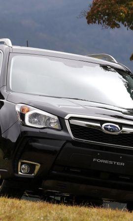 26217 скачать обои Транспорт, Машины, Субару (Subaru) - заставки и картинки бесплатно