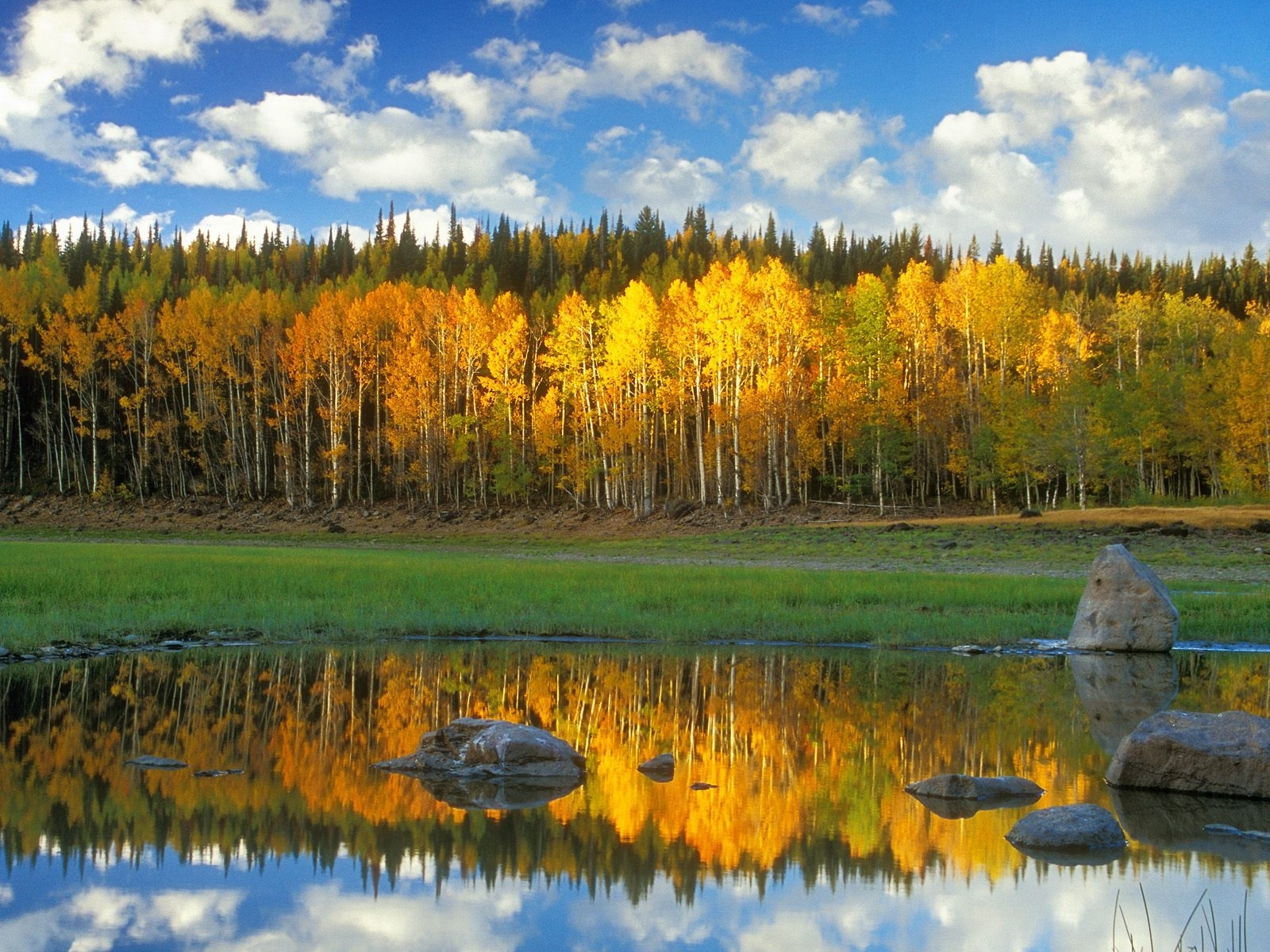 9179 download wallpaper Landscape, Water, Rivers, Trees screensavers and pictures for free