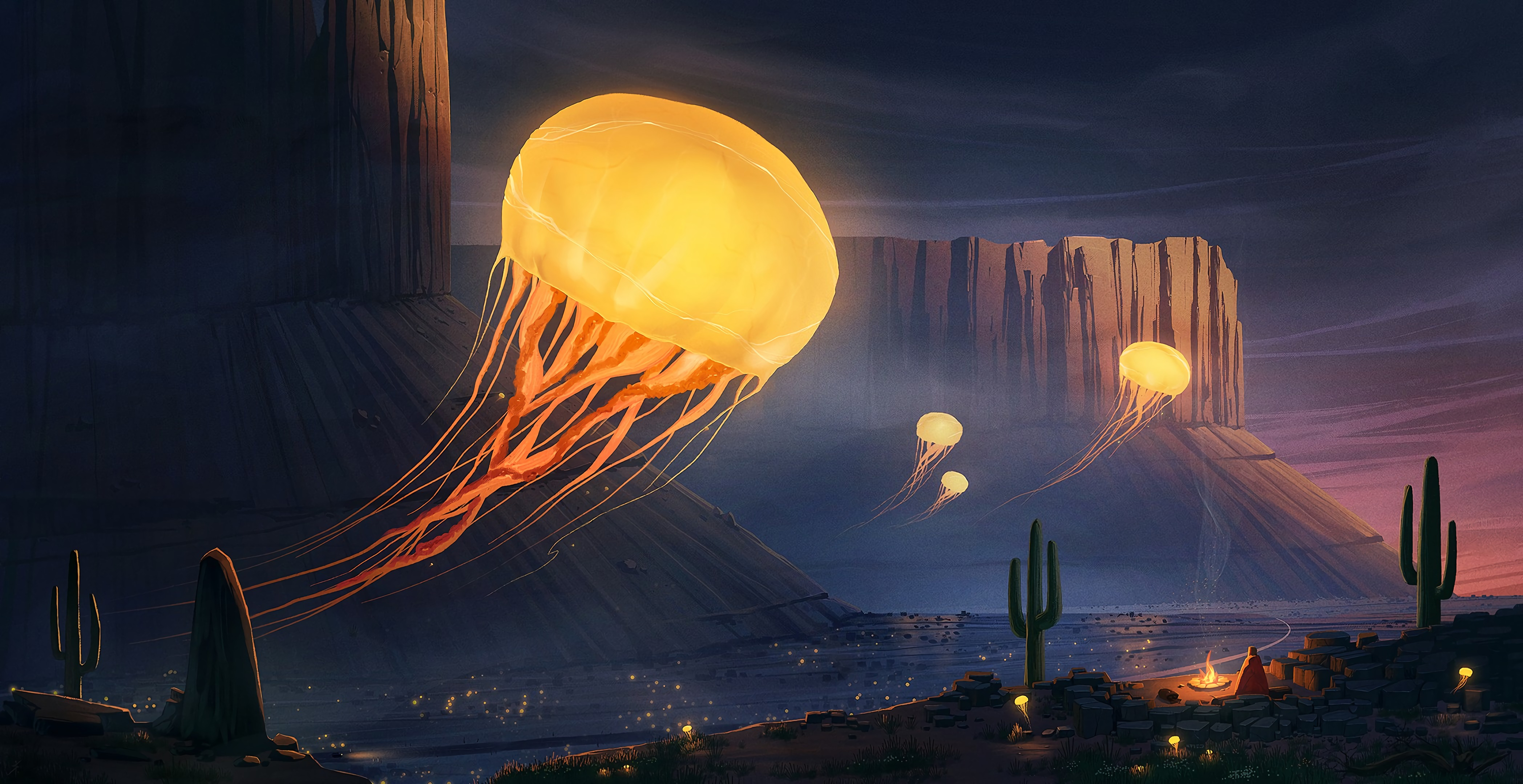126128 download wallpaper Jellyfish, Cactus, Canyon, Art screensavers and pictures for free
