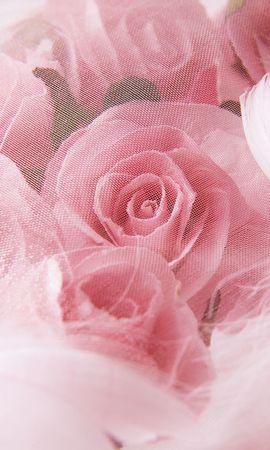 12520 скачать обои Праздники, Растения, Цветы, Розы, Открытки, 8 Марта - заставки и картинки бесплатно