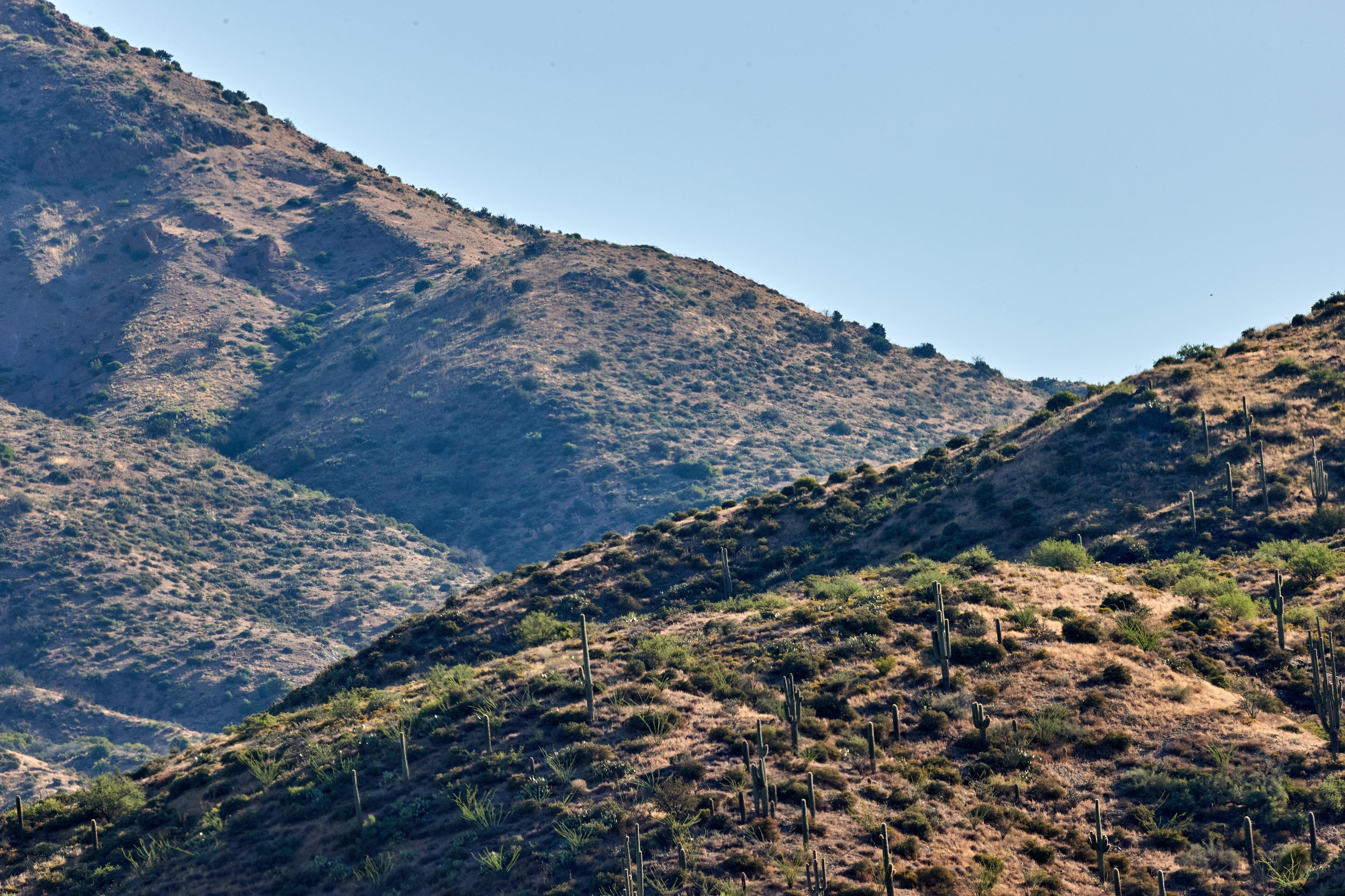 138420 descargar fondo de pantalla Naturaleza, Las Colinas, Colinas, Pendiente, Cuesta, Cielo, Arbusto, Cactus: protectores de pantalla e imágenes gratis