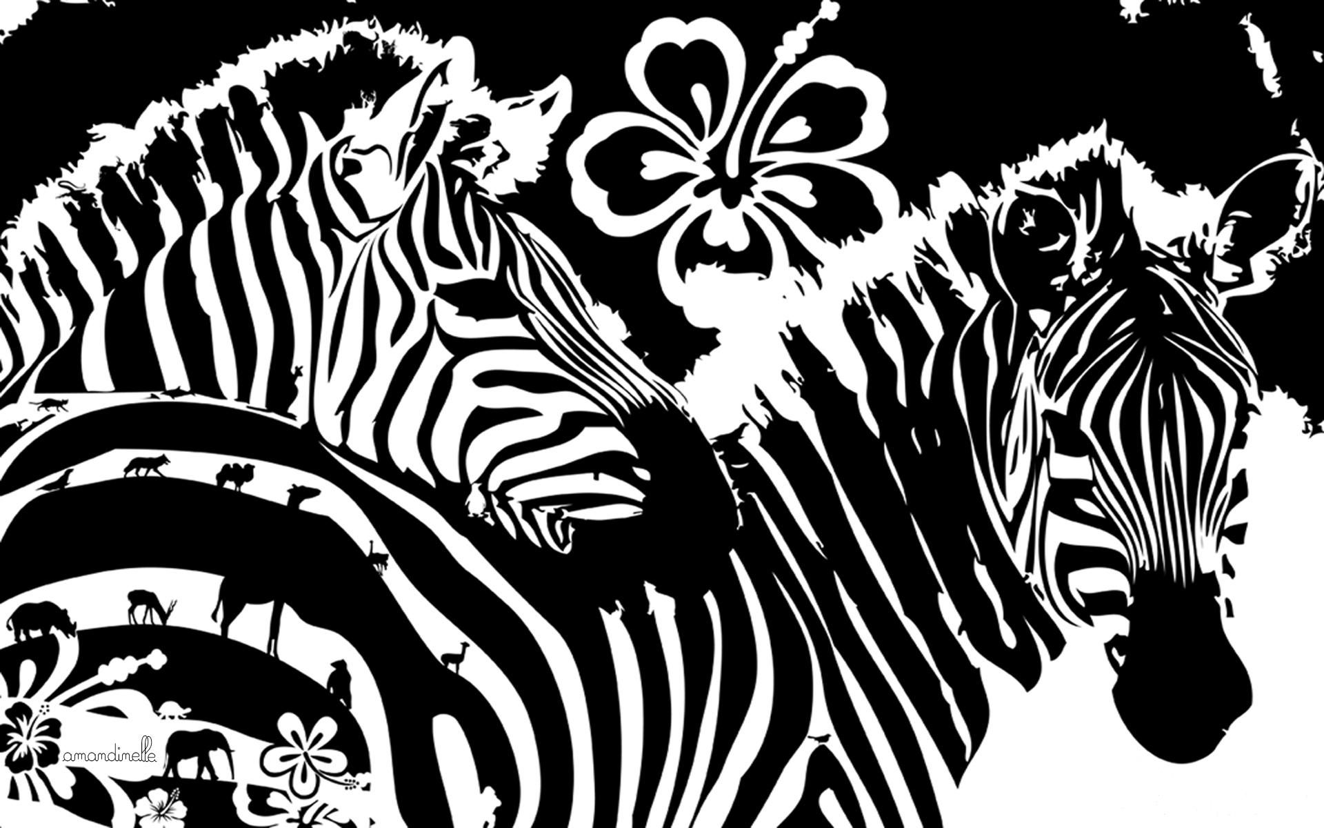 133432 download wallpaper Art, Lines, Graphics, Flowers, Zebra screensavers and pictures for free