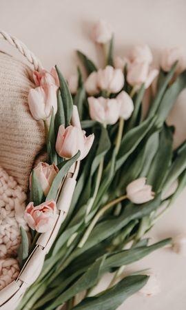 150444 télécharger le fond d'écran Fleurs, Bouquet, Panier, Rose, Printemps, Source, Tulipes - économiseurs d'écran et images gratuitement