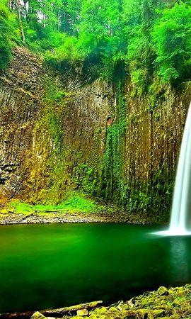 22194 скачать обои Пейзаж, Река, Деревья, Водопады - заставки и картинки бесплатно