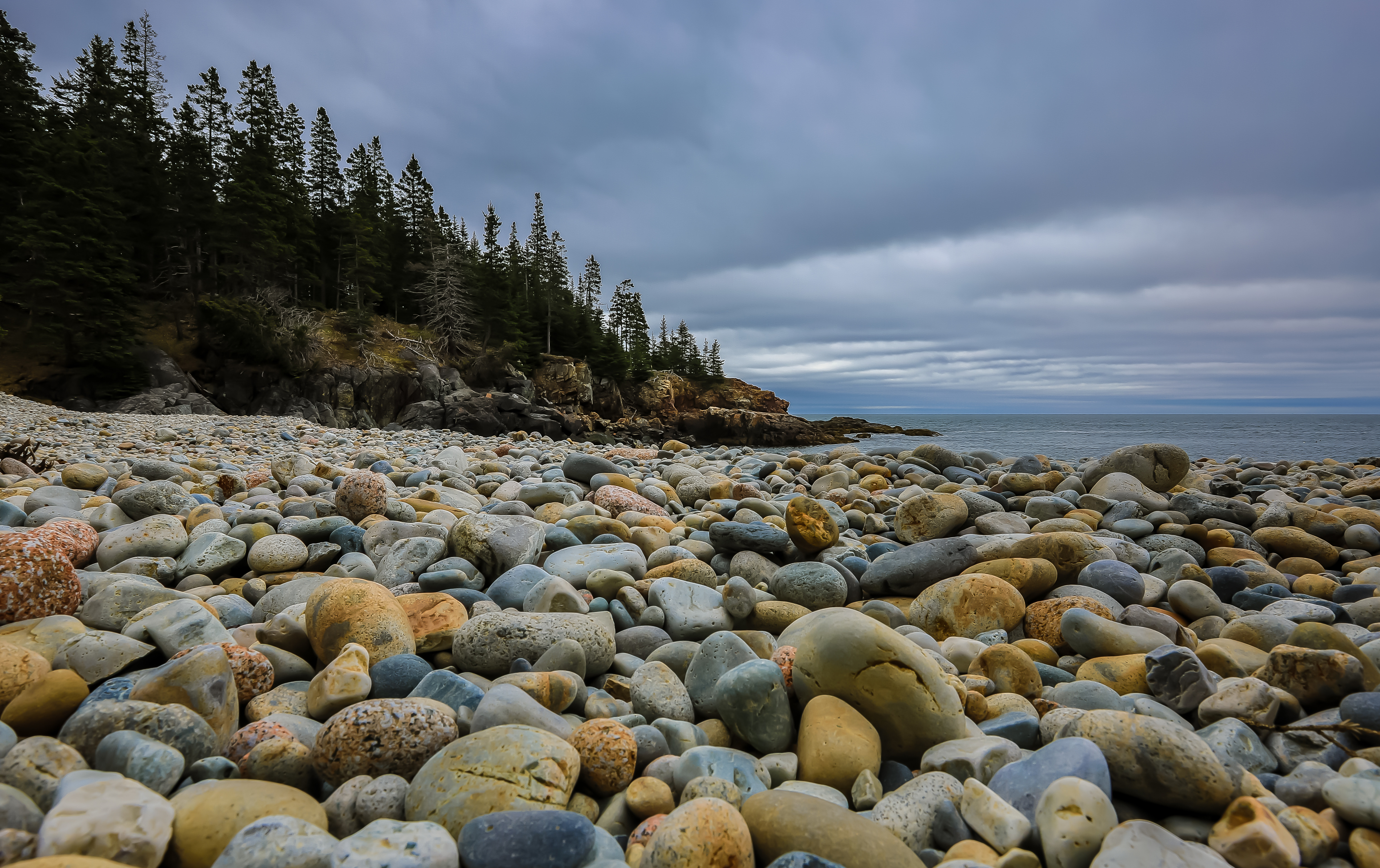 75417 Screensavers and Wallpapers Spruce for phone. Download Nature, Stones, Beach, Forest, Spruce, Fir pictures for free
