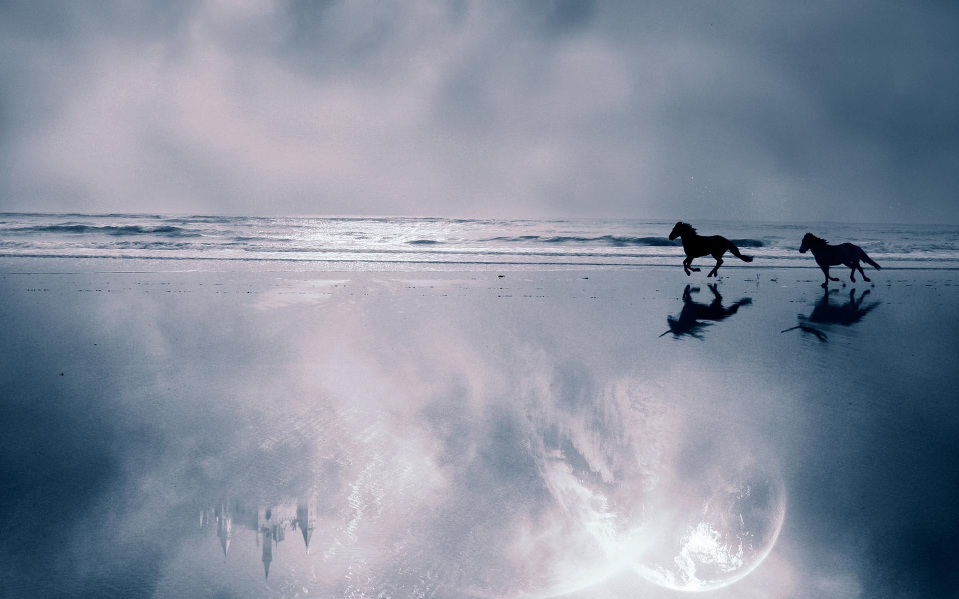 28417 скачать обои Животные, Пейзаж, Лошади, Море - заставки и картинки бесплатно