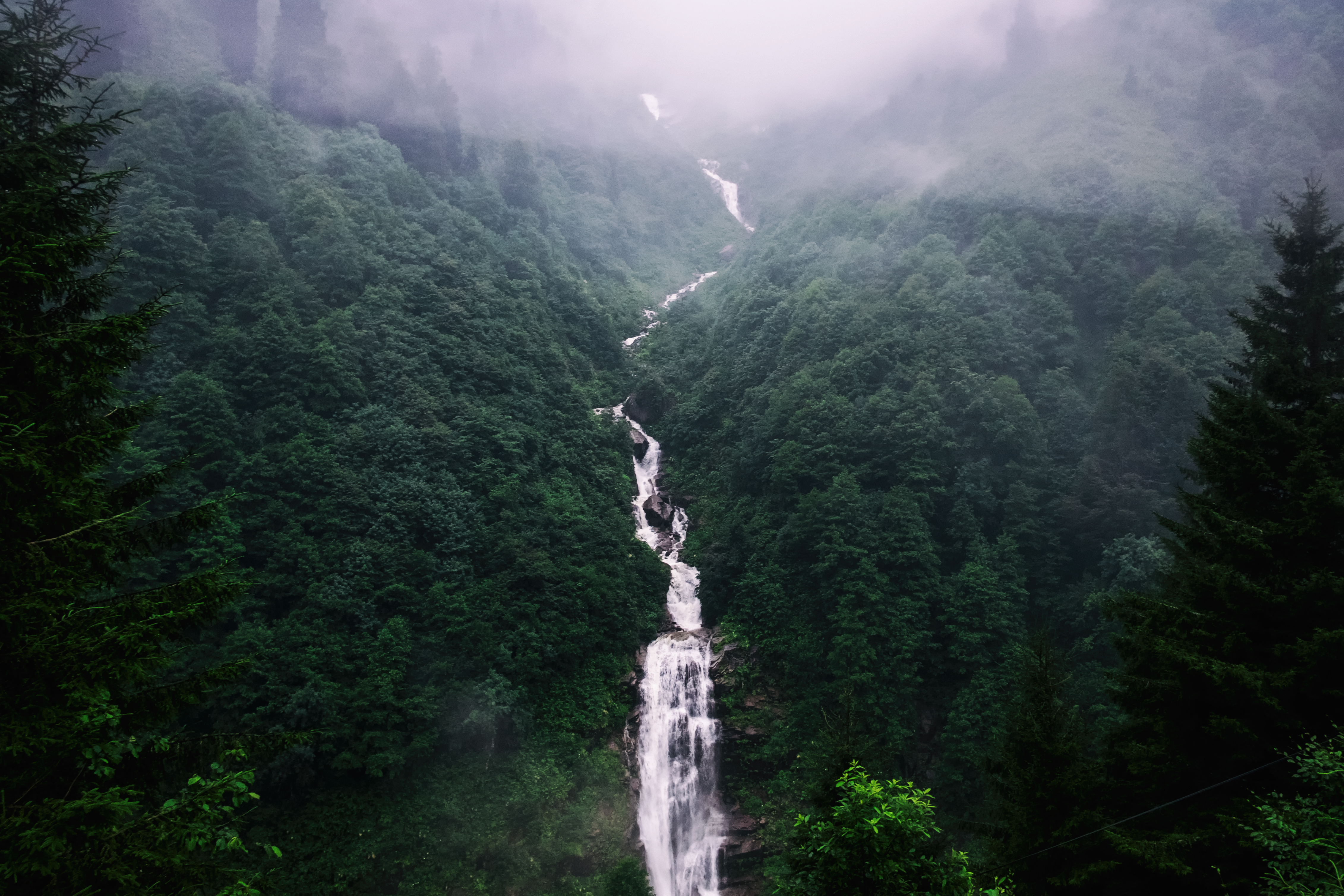 115389 free wallpaper 720x1520 for phone, download images Nature, Trees, Waterfall, Fog 720x1520 for mobile