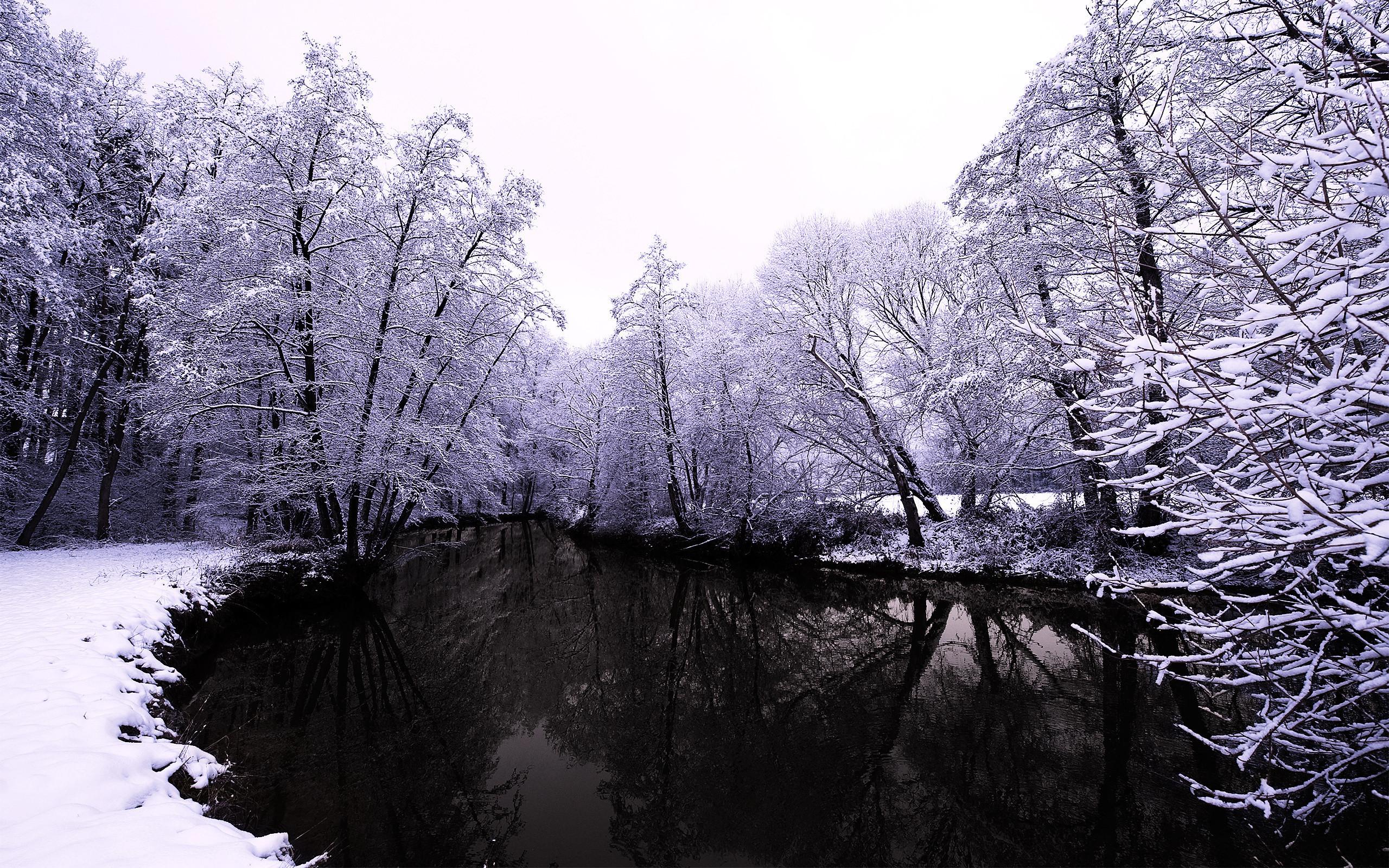 20754 скачать обои Пейзаж, Зима, Река, Деревья, Снег - заставки и картинки бесплатно