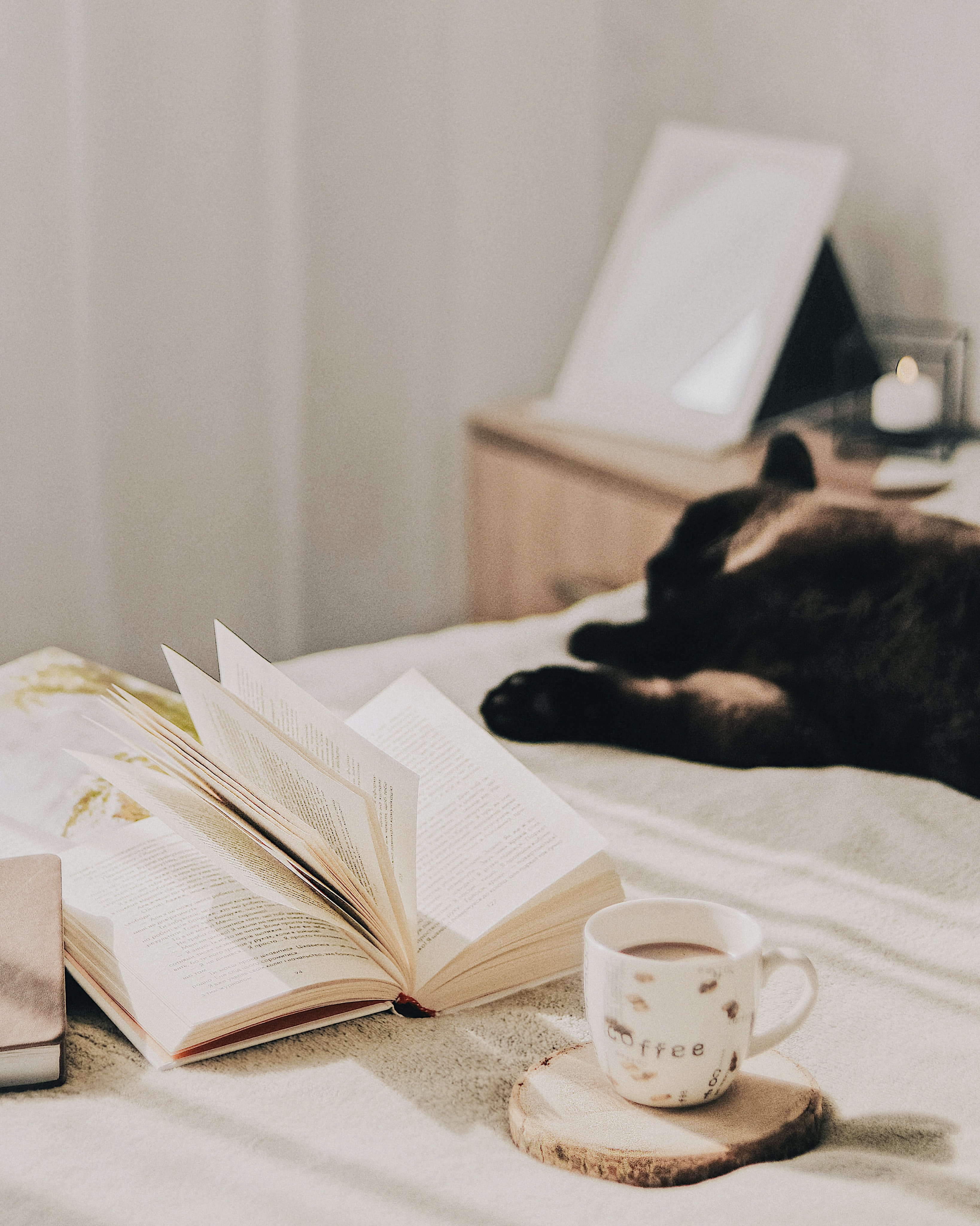 141484 download wallpaper Miscellanea, Miscellaneous, Cup, Coffee, Book, Pages, Page, Cat screensavers and pictures for free