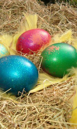 12888 descargar fondo de pantalla Vacaciones, Comida, Huevos, Pascua: protectores de pantalla e imágenes gratis
