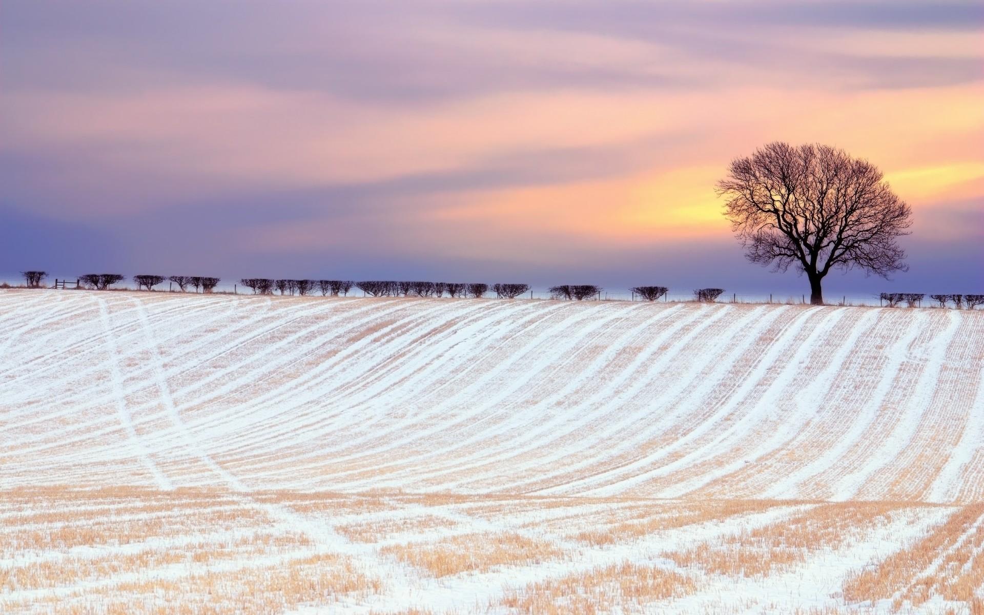22634 скачать обои Пейзаж, Зима, Деревья, Закат, Поля, Снег - заставки и картинки бесплатно
