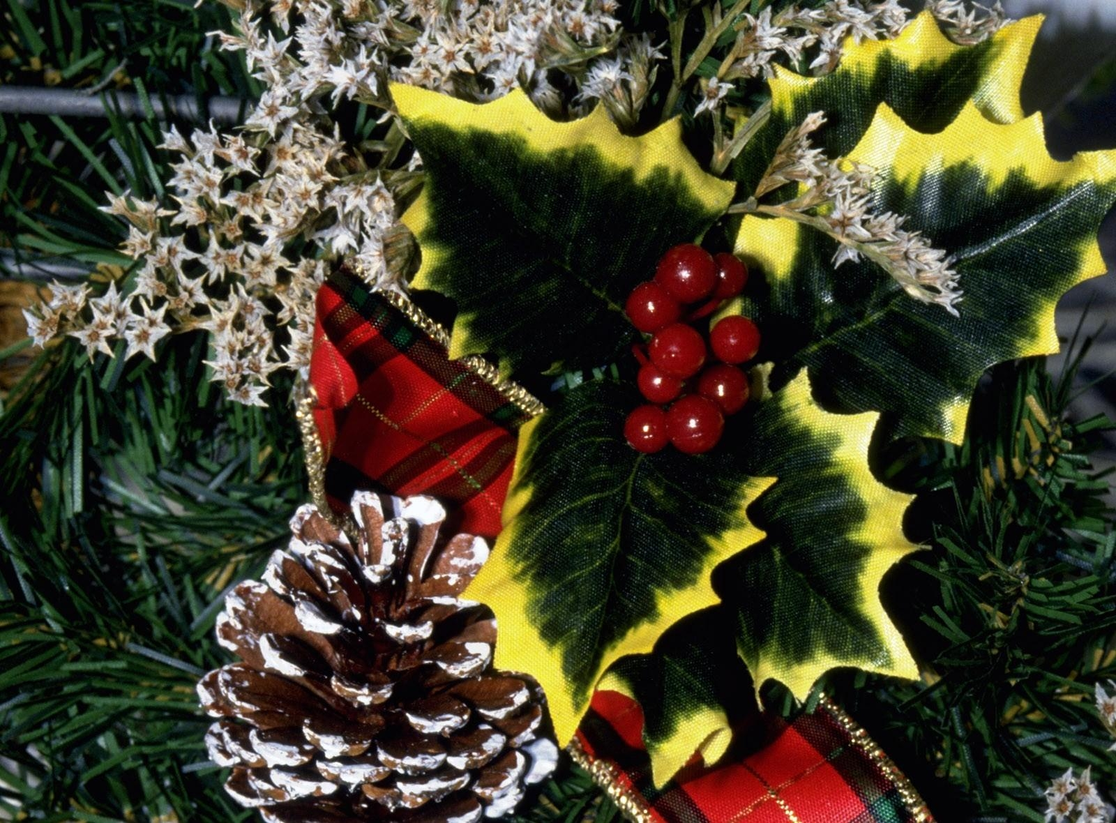 95167 download wallpaper Holidays, Cones, Needles, Holiday, Decorations, Berries screensavers and pictures for free