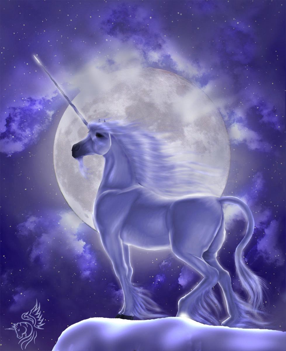 21184 Hintergrundbild herunterladen Tiere, Fantasie, Unicorns - Bildschirmschoner und Bilder kostenlos