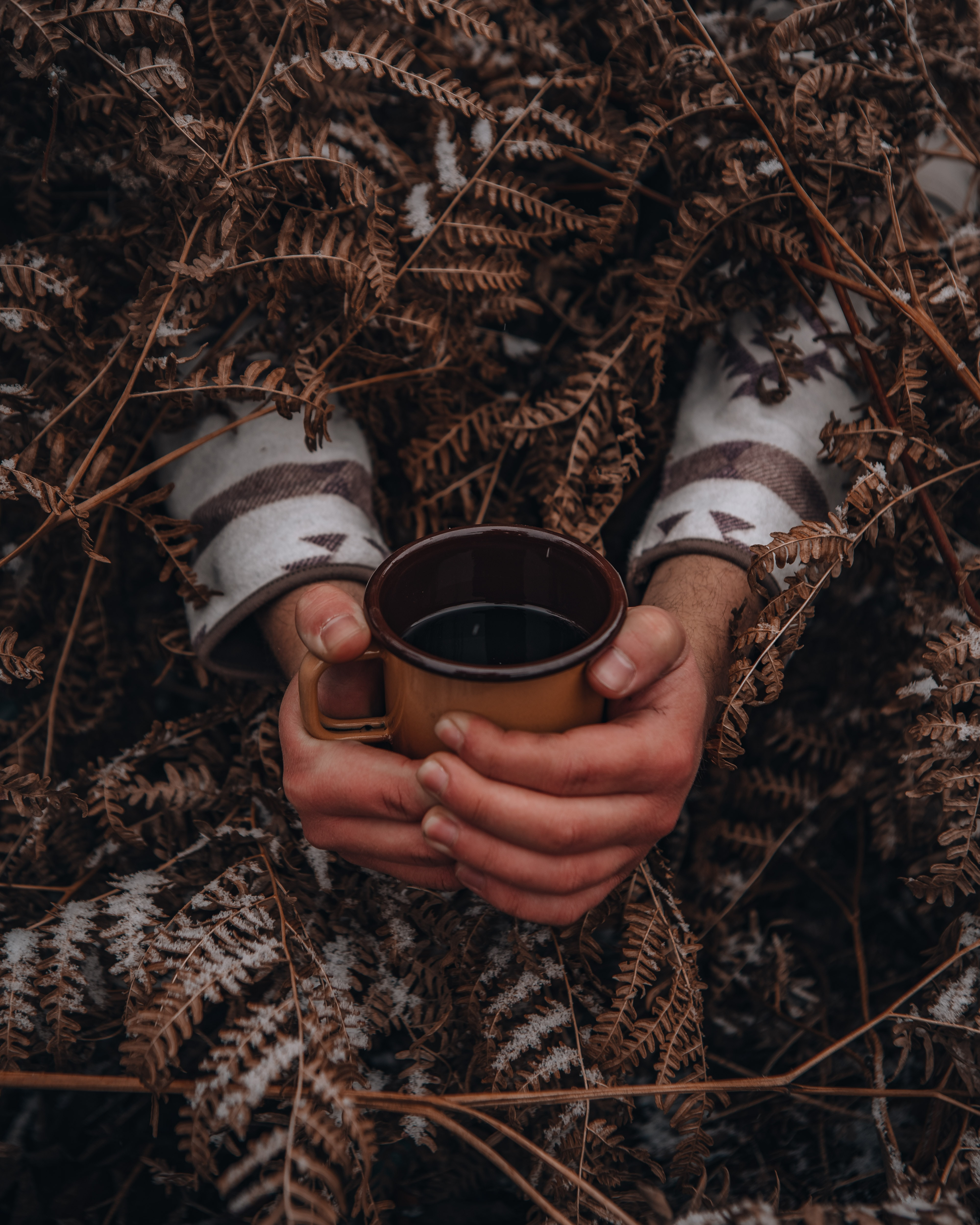 154646 download wallpaper Miscellanea, Miscellaneous, Cup, Mug, Hands, Fern, Snow screensavers and pictures for free