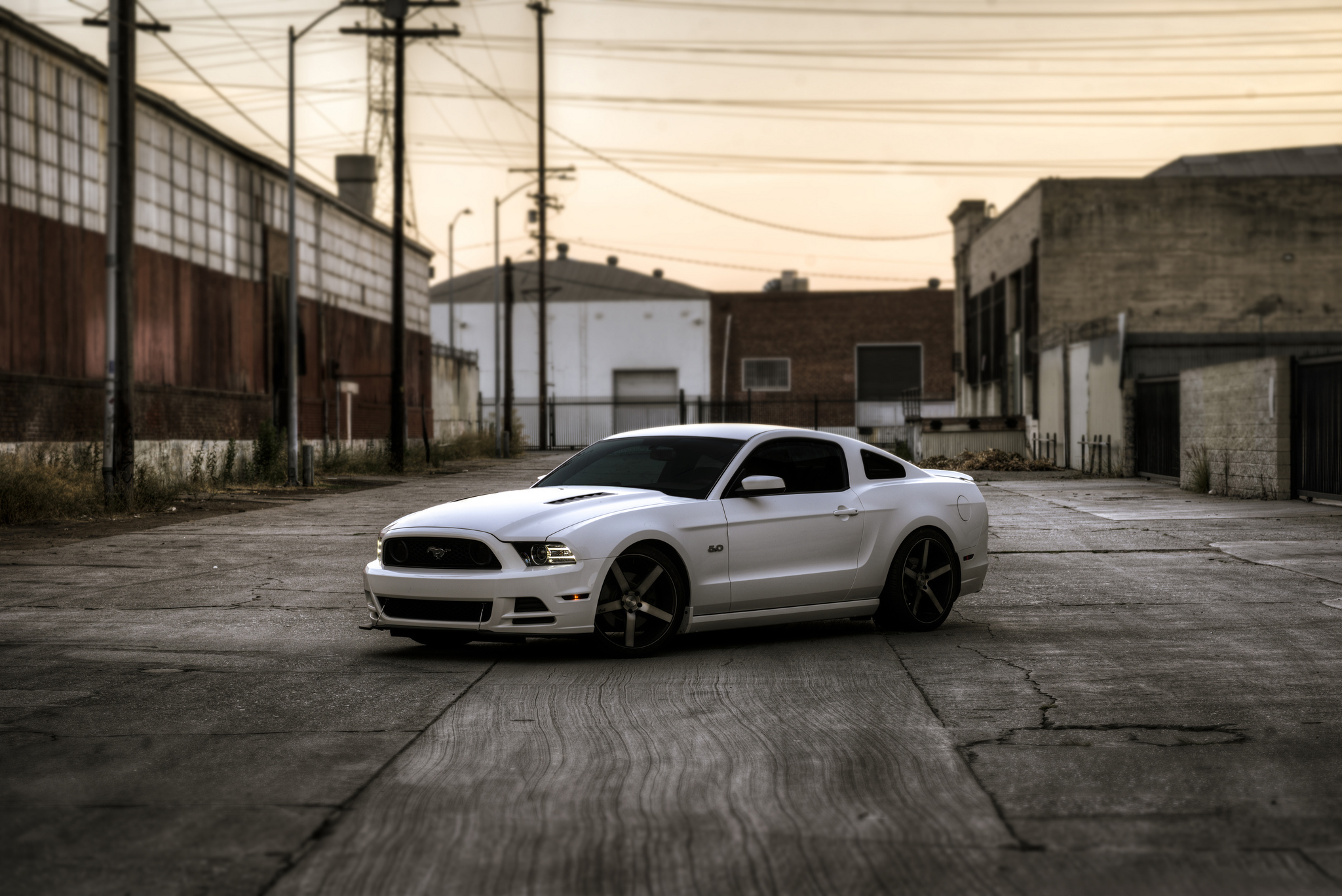 55842 download wallpaper Ford, Mustang, Cars, Side View, Gt screensavers and pictures for free
