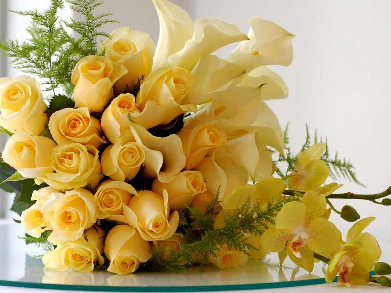 33851 télécharger le fond d'écran Plantes, Fleurs, Roses, Bouquets - économiseurs d'écran et images gratuitement