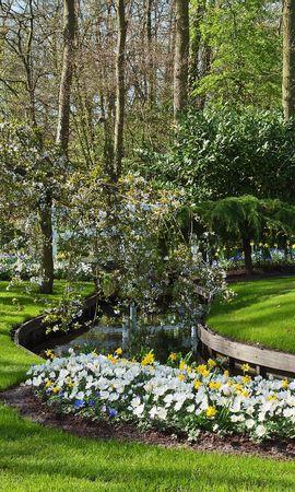 23395 télécharger le fond d'écran Paysage, Fleurs, Arbres, Herbe, Buissons - économiseurs d'écran et images gratuitement