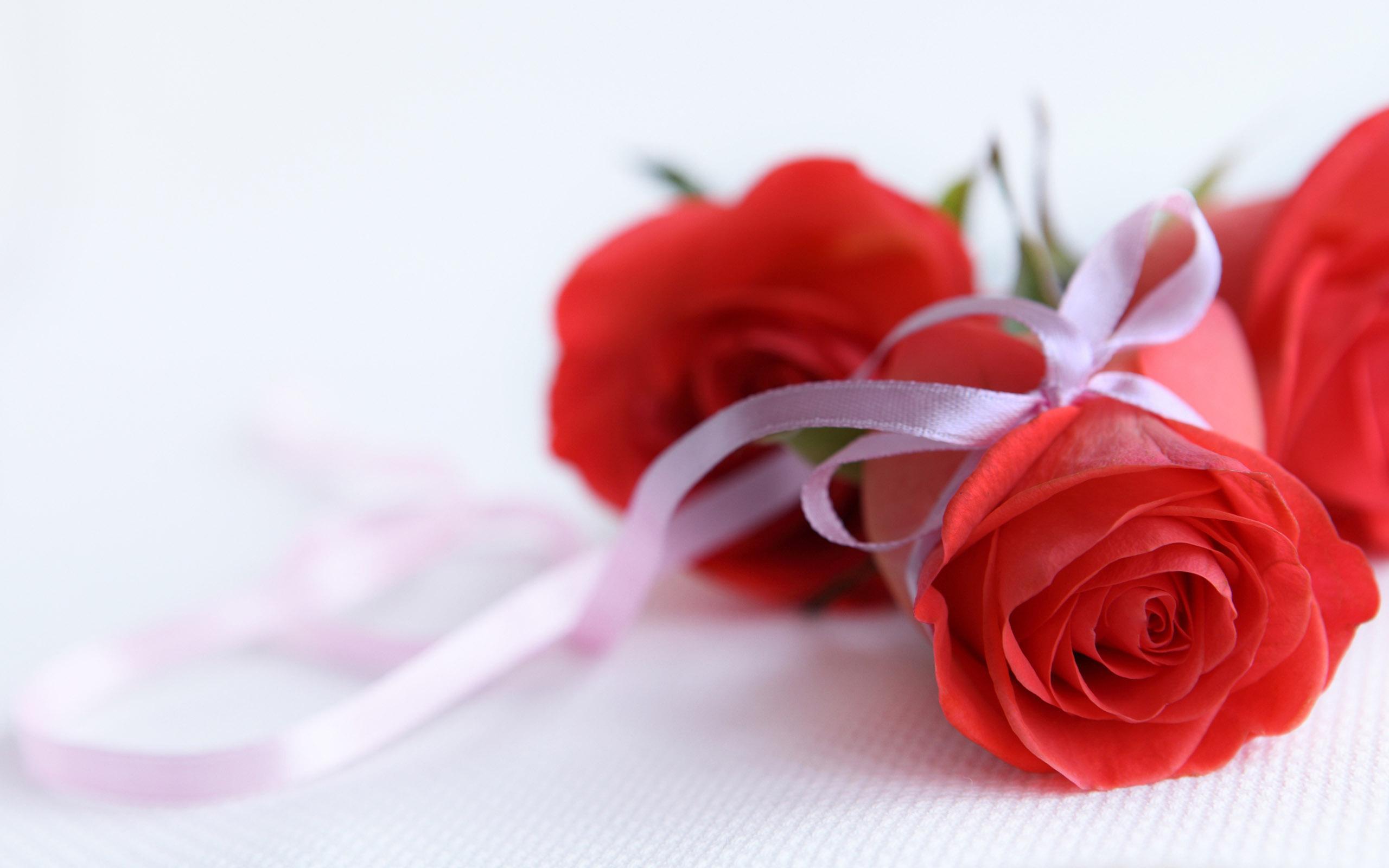 28353 скачать обои Растения, Цветы, Розы, Букеты - заставки и картинки бесплатно