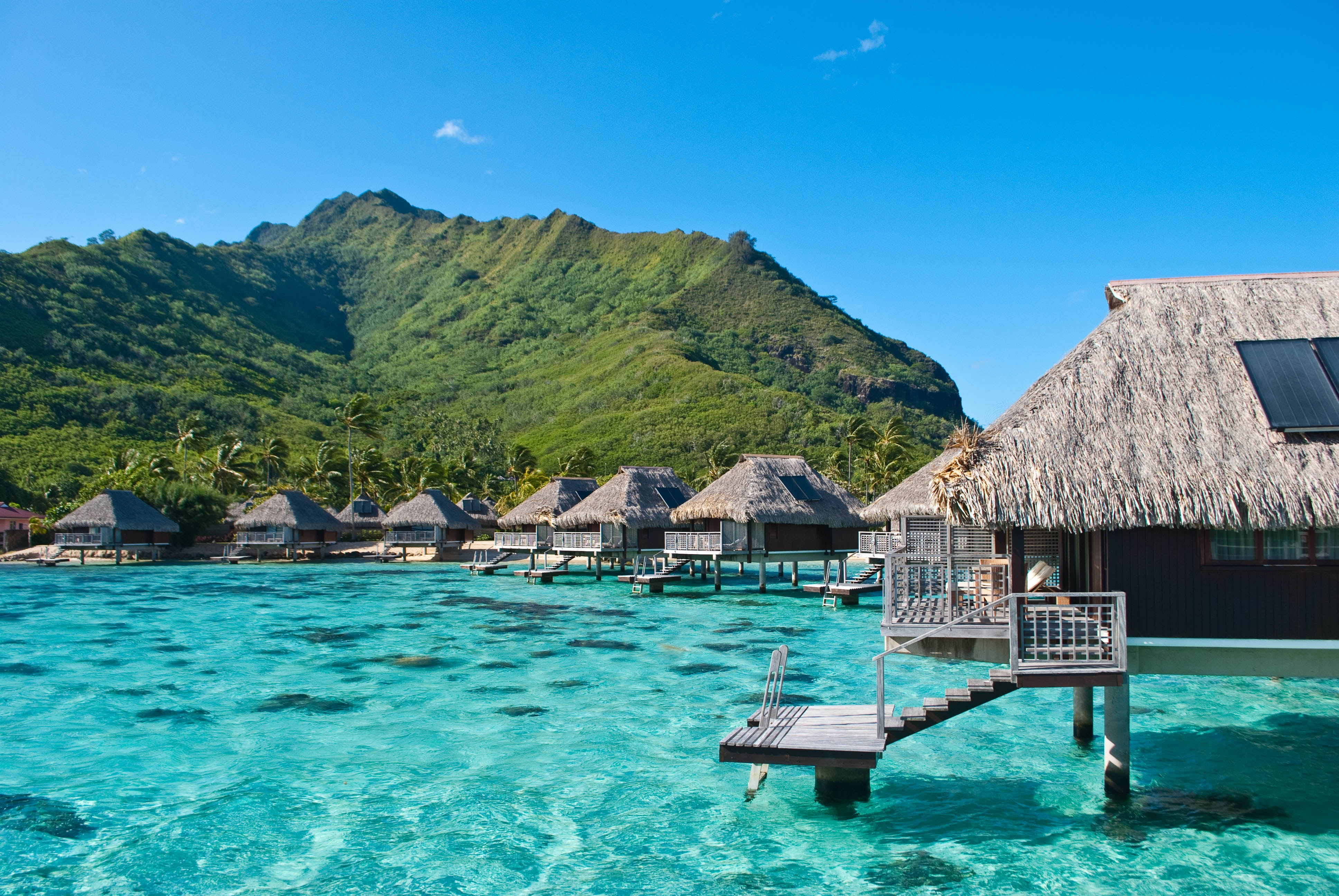 113309 Screensavers and Wallpapers Nature for phone. Download Nature, Tropics, Sea, Bungalow pictures for free