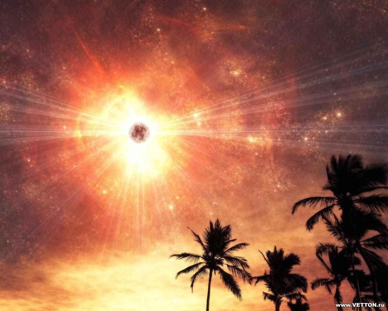 4208 скачать обои Пейзаж, Небо, Солнце, Пальмы - заставки и картинки бесплатно