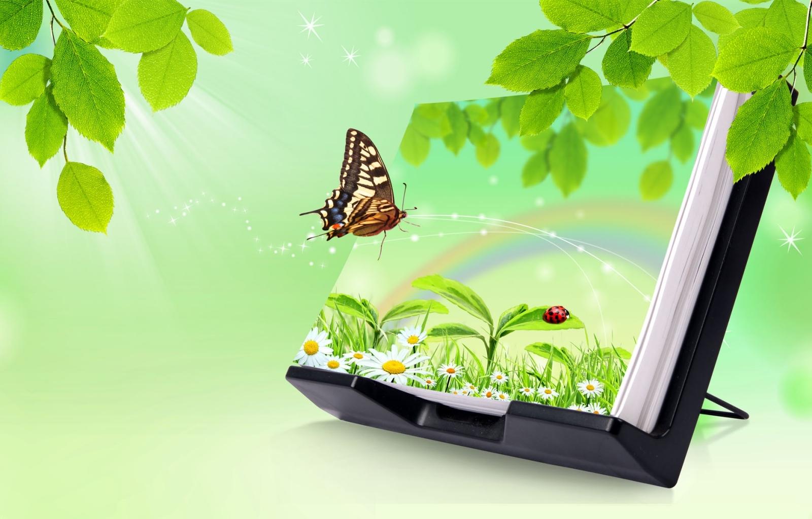 10179 descargar fondo de pantalla Mariposas, Insectos, Imágenes: protectores de pantalla e imágenes gratis