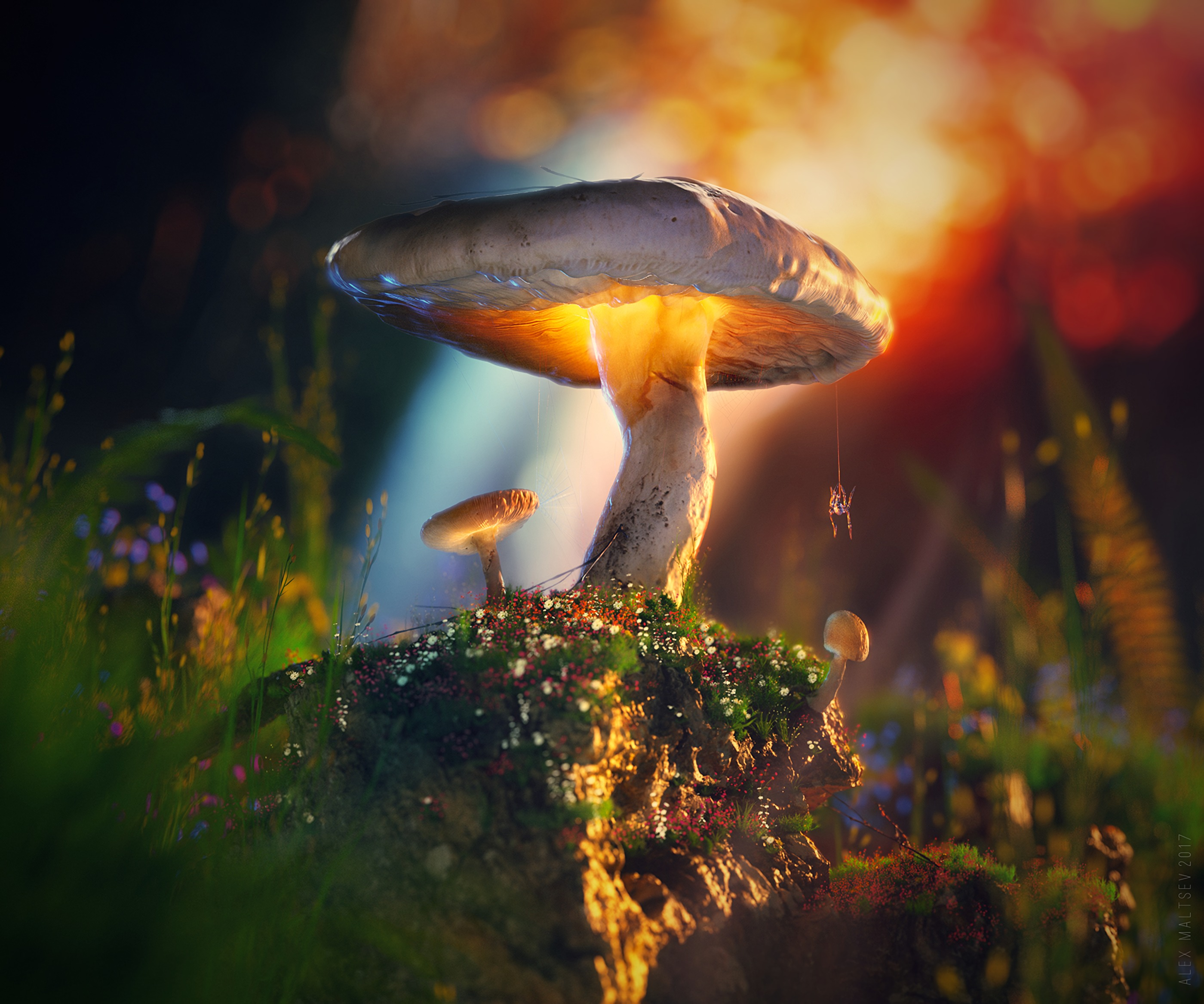 92355 download wallpaper 3D, Mashrooms, Macro, Glow, Spider screensavers and pictures for free