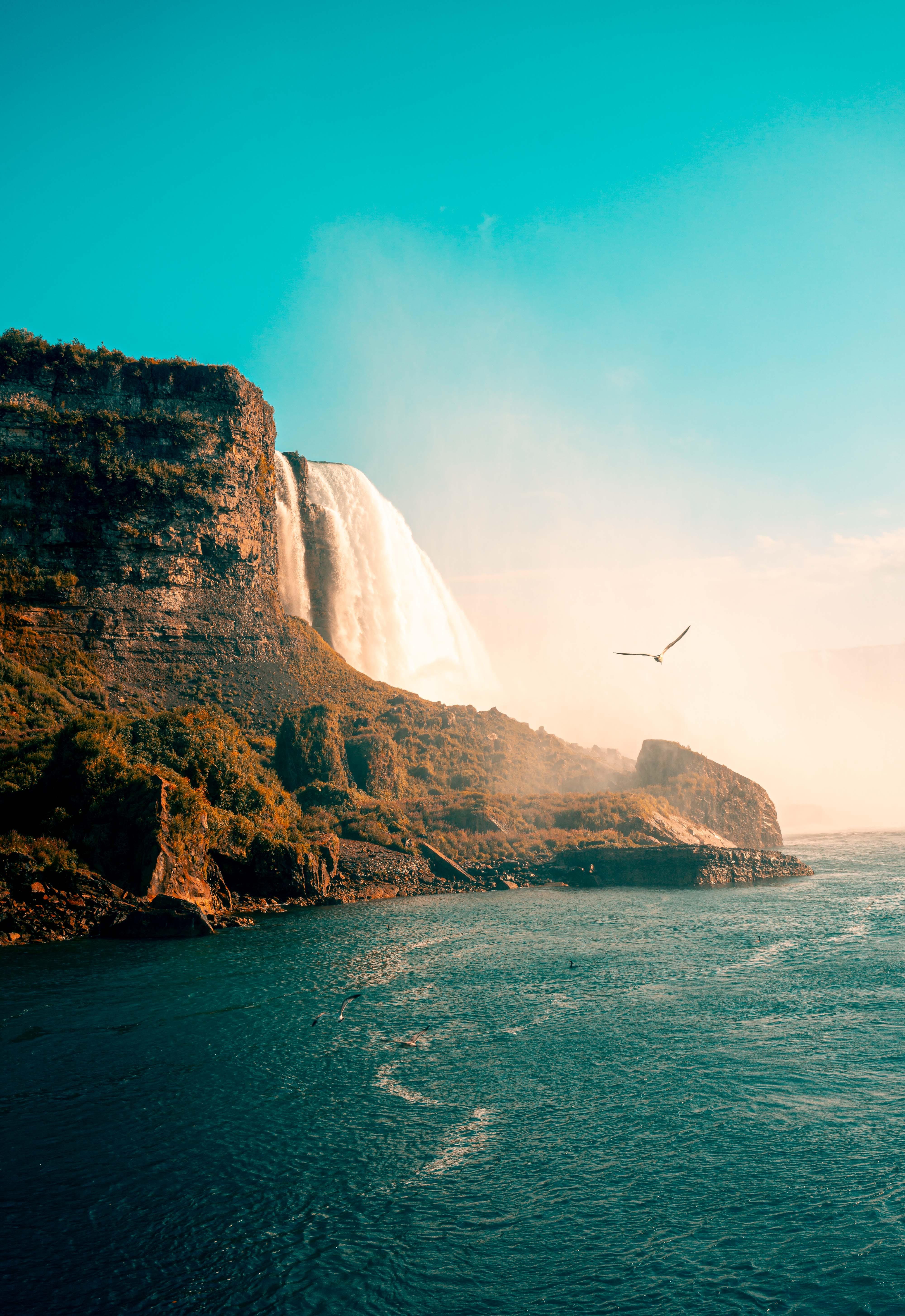 98813 скачать обои Природа, Птицы, Море, Скалы, Побережье, Водопад - заставки и картинки бесплатно