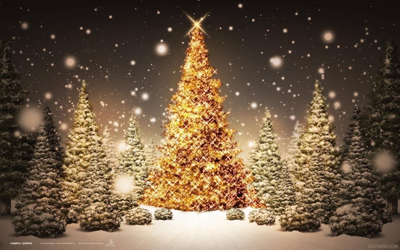 2251 скачать обои Праздники, Зима, Деревья, Новый Год (New Year), Снег, Елки, Рождество (Christmas, Xmas) - заставки и картинки бесплатно