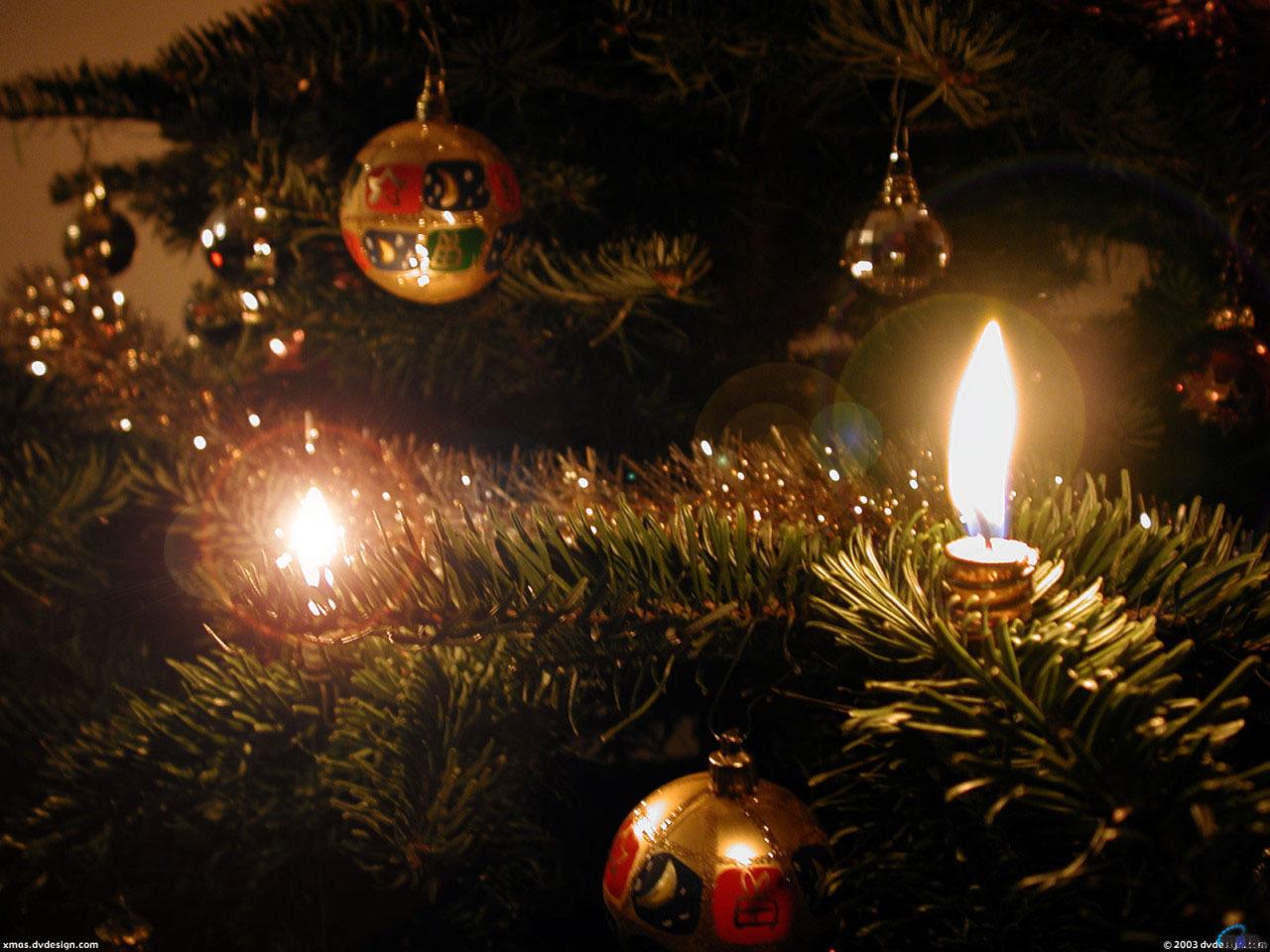 10741 скачать обои Праздники, Новый Год (New Year), Игрушки, Елки, Рождество (Christmas, Xmas) - заставки и картинки бесплатно
