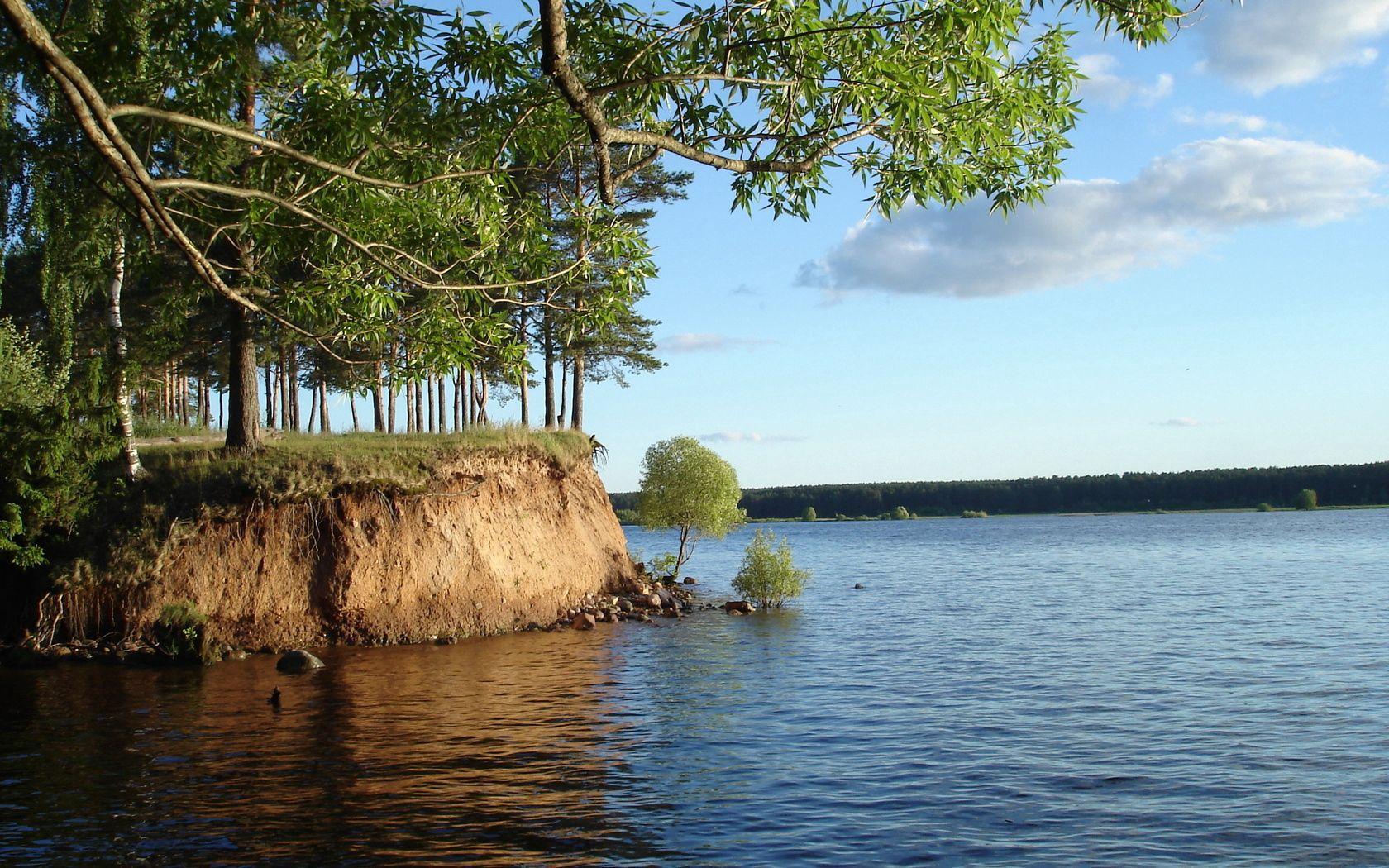 70230 скачать обои Река, Природа, Вода, Берег, Дерево, Ветка, Куст, Глина - заставки и картинки бесплатно